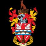 Стейнс лого
