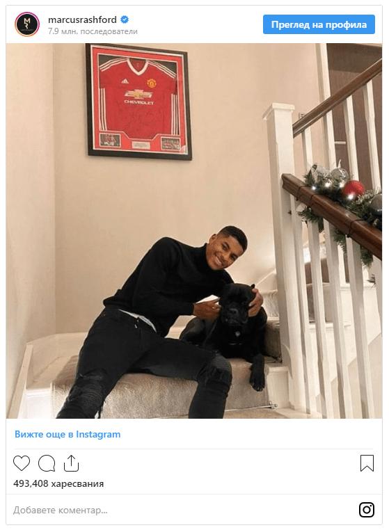 Домашните любимци на футболните звезди СНИМКИ 20
