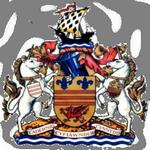 Бари Таун Юнайтед лого