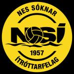 НСИ Рунавик лого