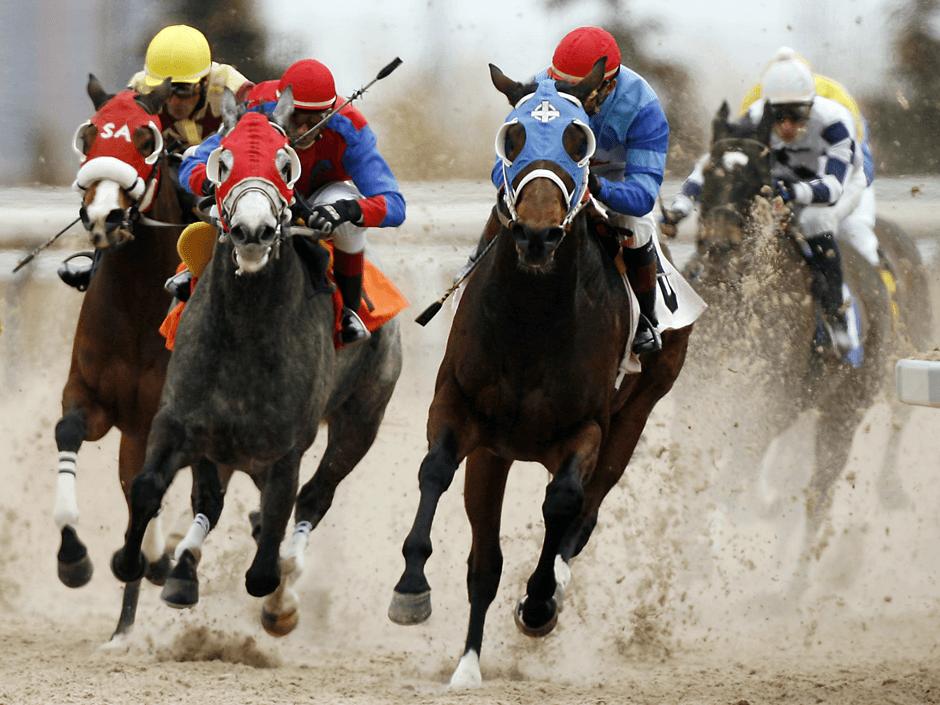 Критерий на Кели в конните надбягвания