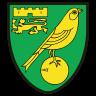 Норич лого